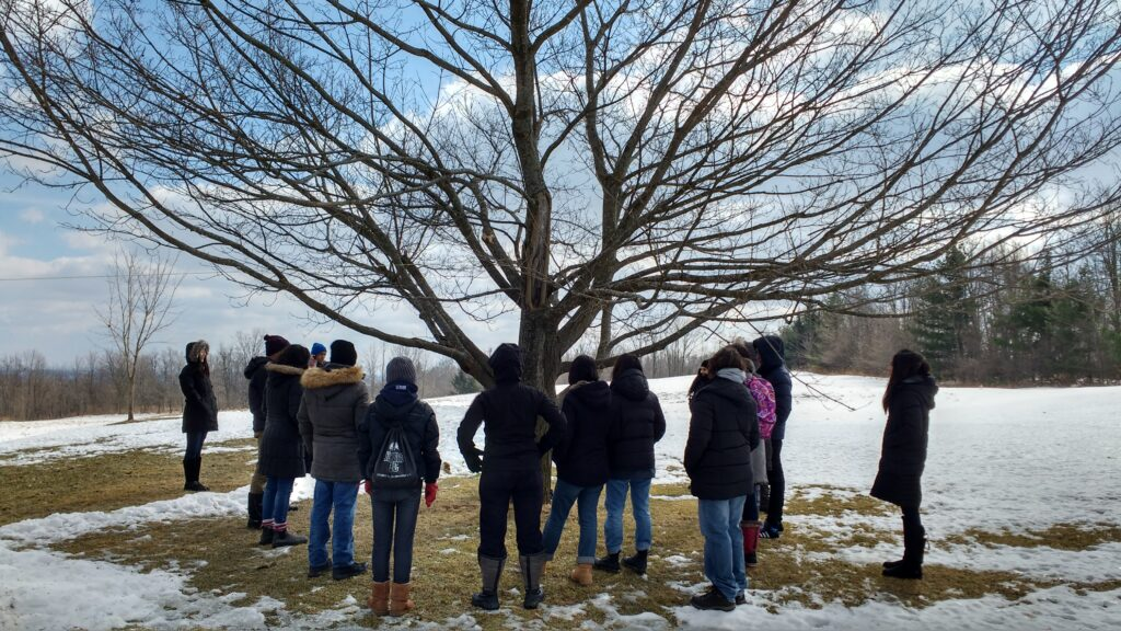 Group of students standing around a tree in winter